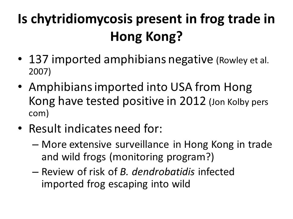 Is chytridiomycosis present in frog trade in Hong Kong.