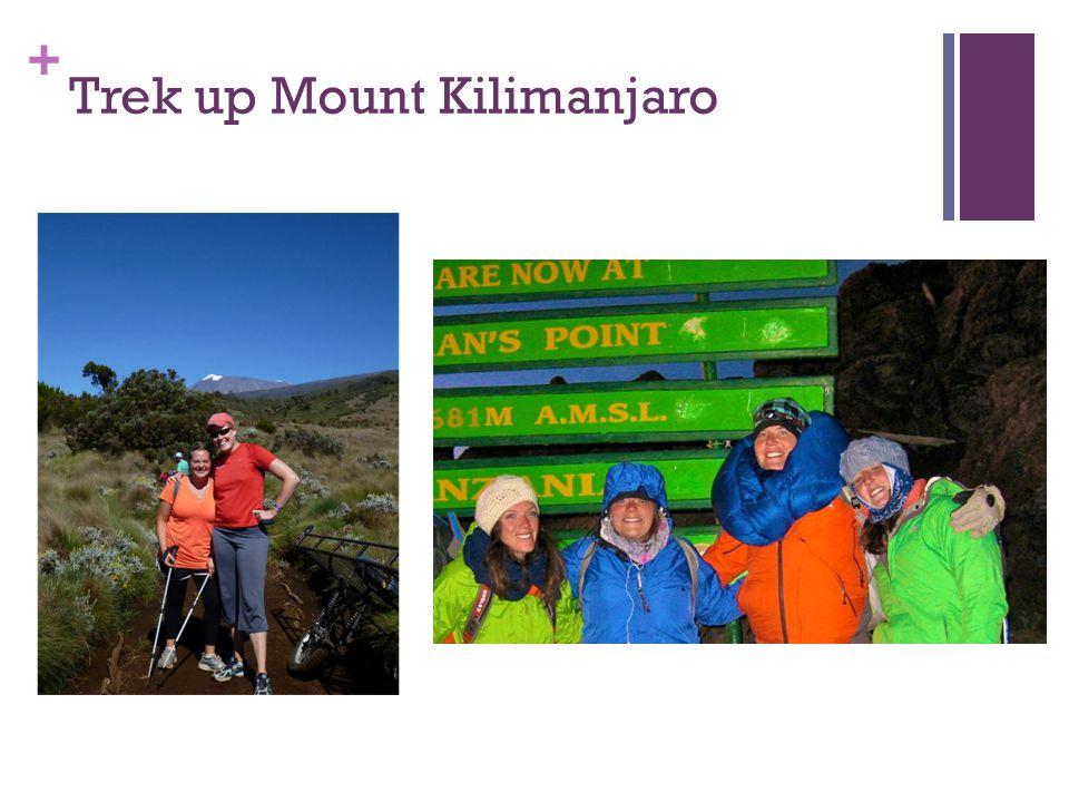 + Trek up Mount Kilimanjaro