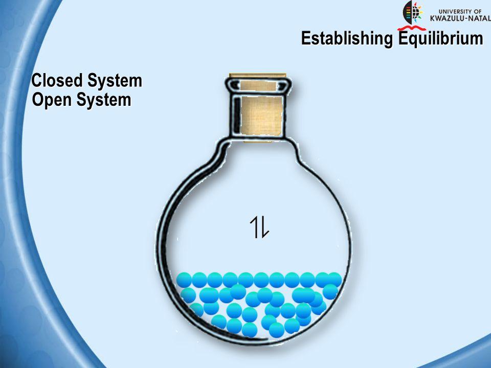 Closed System Open System Establishing Equilibrium