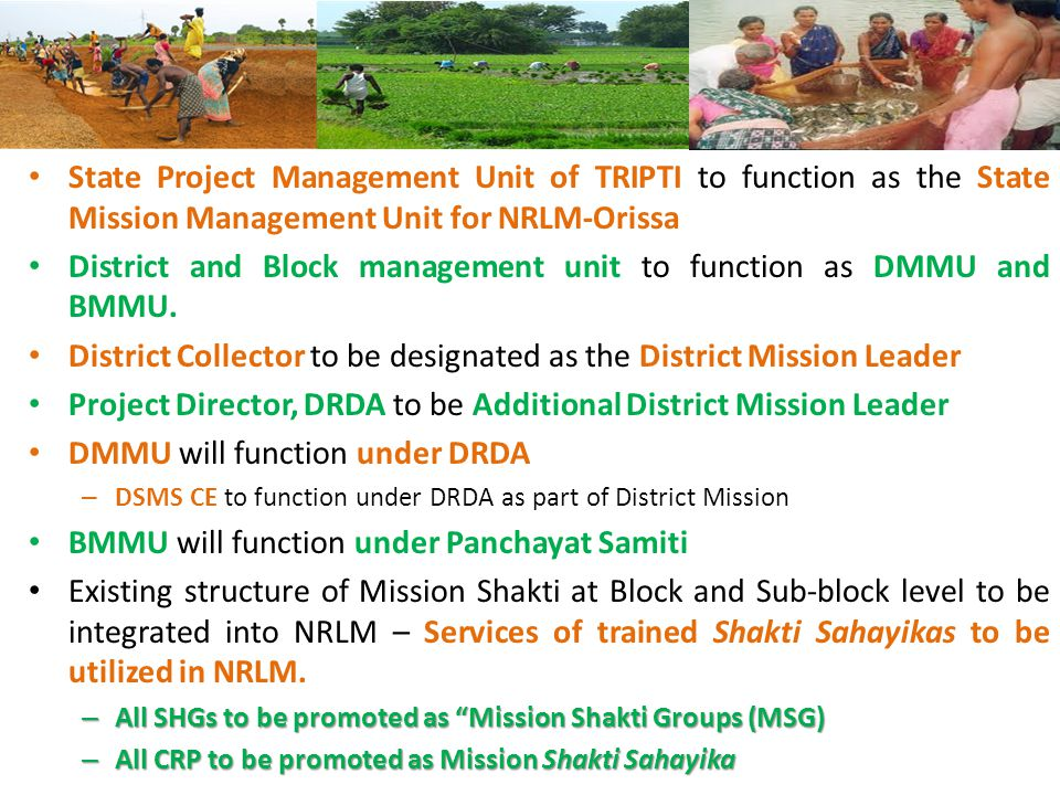 State Project Management Unit of TRIPTI to function as the State Mission Management Unit for NRLM-Orissa District and Block management unit to function as DMMU and BMMU.