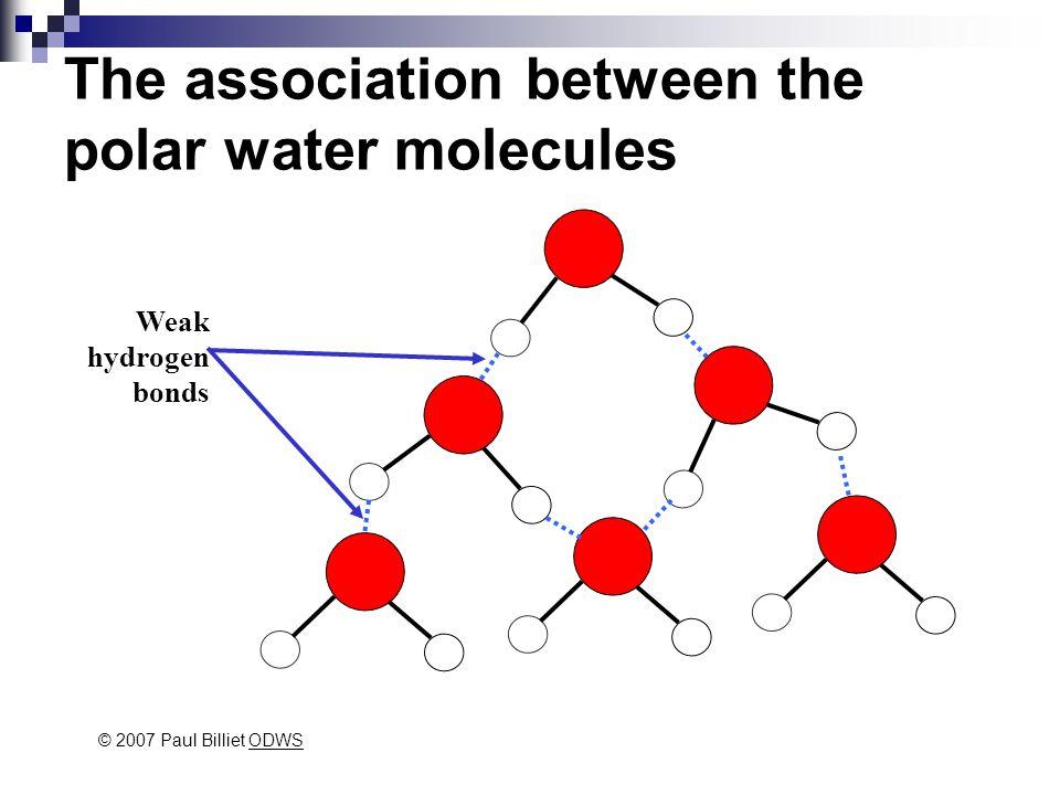 The association between the polar water molecules Weak hydrogen bonds © 2007 Paul Billiet ODWSODWS