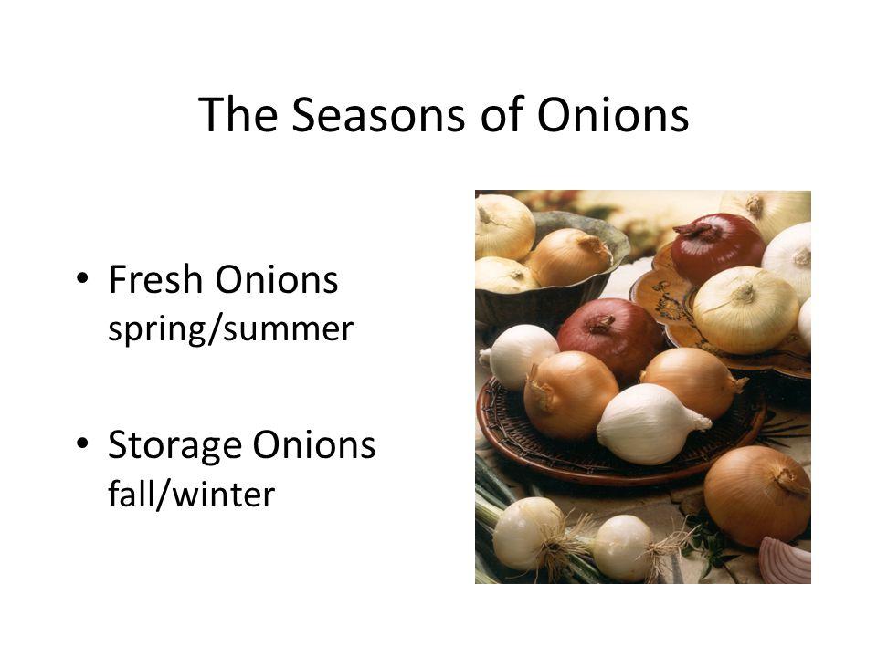 The Seasons of Onions Fresh Onions spring/summer Storage Onions fall/winter