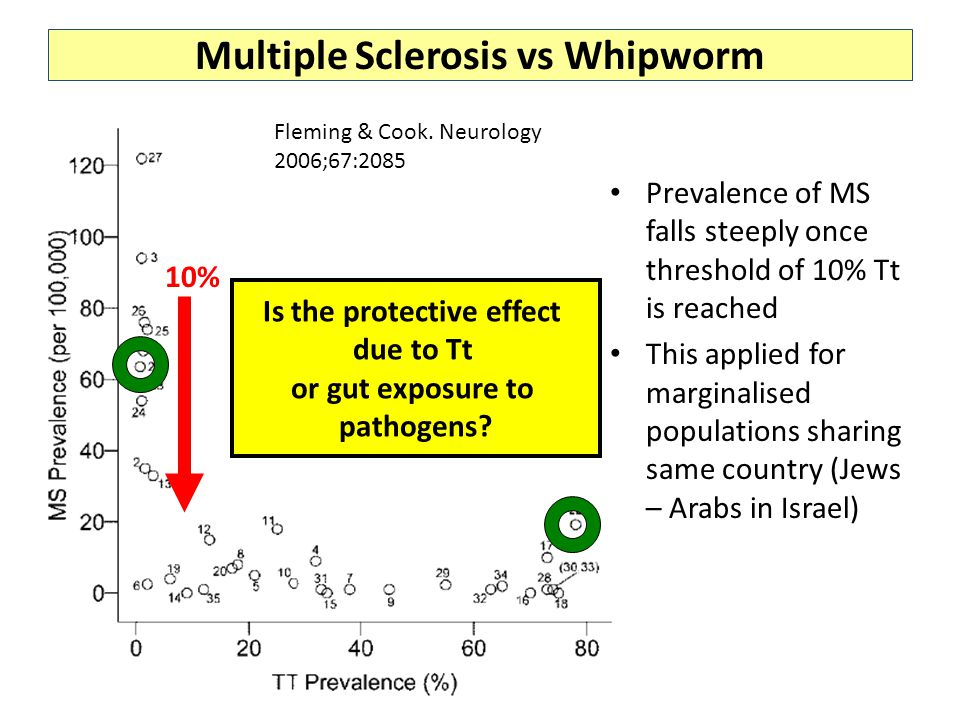 Multiple Sclerosis vs Whipworm Prevalence of MS falls steeply once threshold of 10% Tt is reached This applied for marginalised populations sharing same country (Jews – Arabs in Israel) Fleming & Cook.