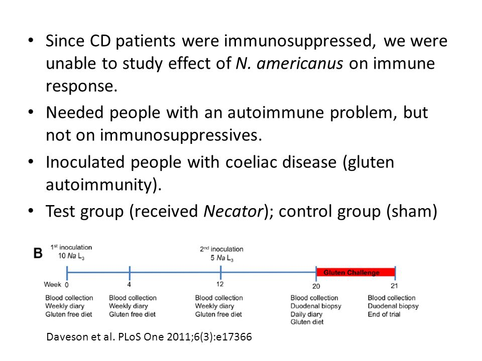 Since CD patients were immunosuppressed, we were unable to study effect of N.
