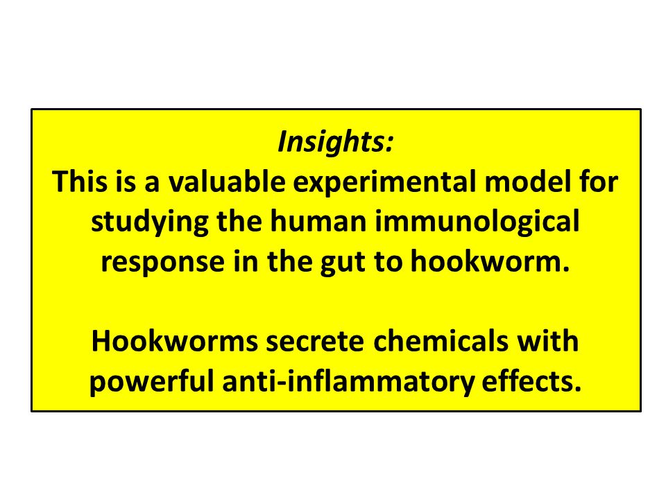 Insights: This is a valuable experimental model for studying the human immunological response in the gut to hookworm.