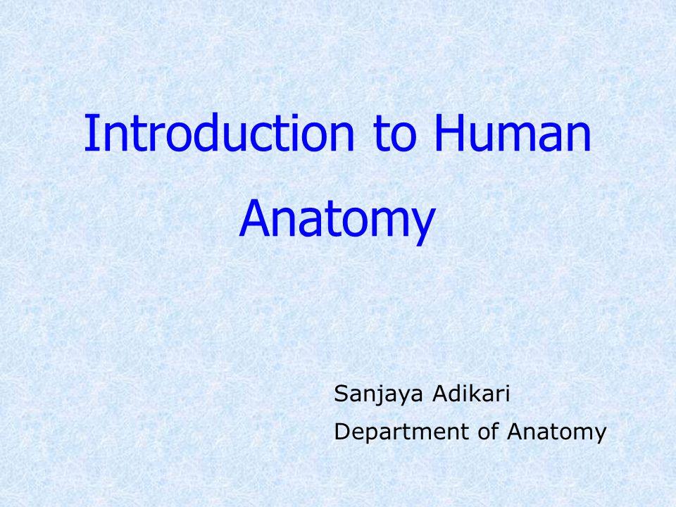 Introduction to Human Anatomy Sanjaya Adikari Department of Anatomy