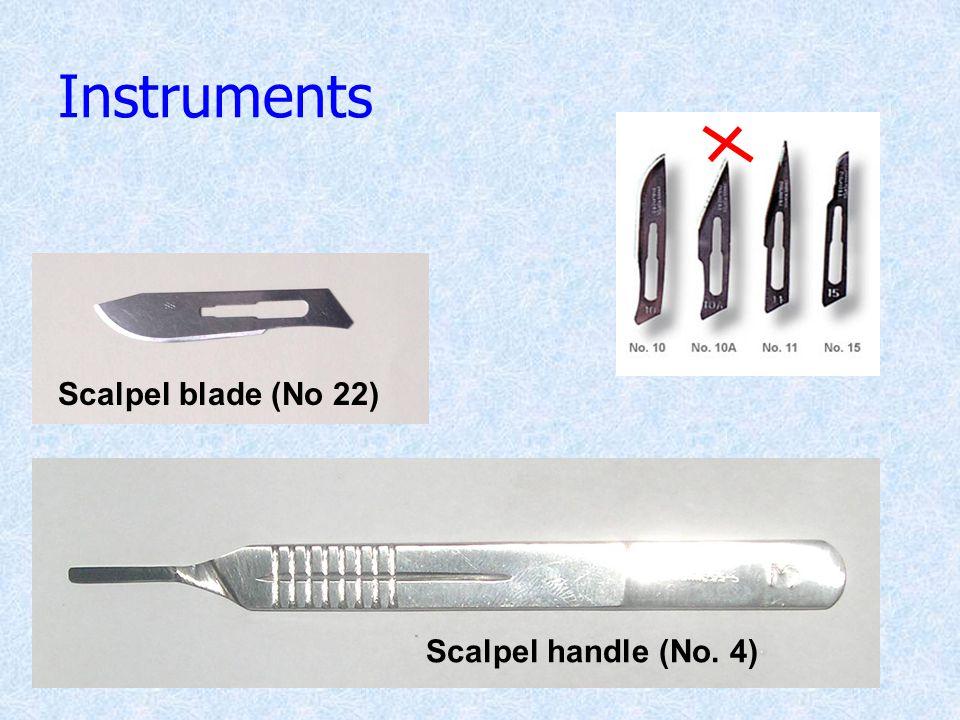Instruments Scalpel handle (No. 4) Scalpel blade (No 22)