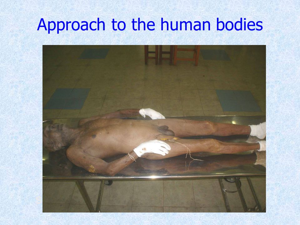 ScissorsForceps Approach to the human bodies