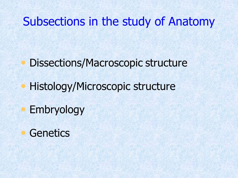 Subsections in the study of Anatomy Dissections/Macroscopic structure Histology/Microscopic structure Embryology Genetics