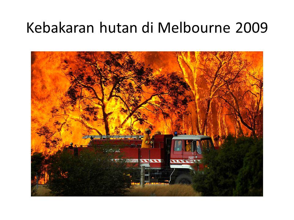 Kebakaran hutan di Melbourne 2009