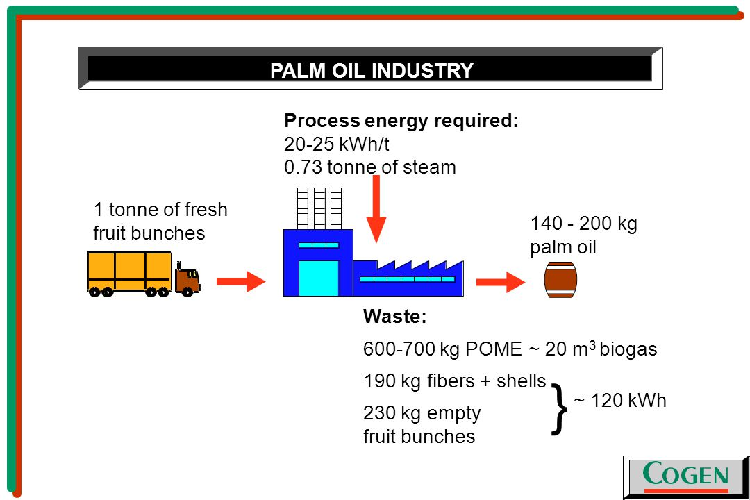 1 tonne of fresh fruit bunches Process energy required: kWh/t 0.73 tonne of steam Waste: kg POME ~ 20 m 3 biogas 190 kg fibers + shells 230 kg empty fruit bunches kg palm oil } ~ 120 kWh PALM OIL INDUSTRY