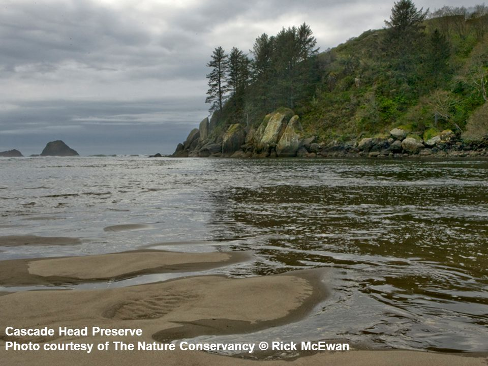 Cascade Head Preserve Photo courtesy of The Nature Conservancy © Rick McEwan
