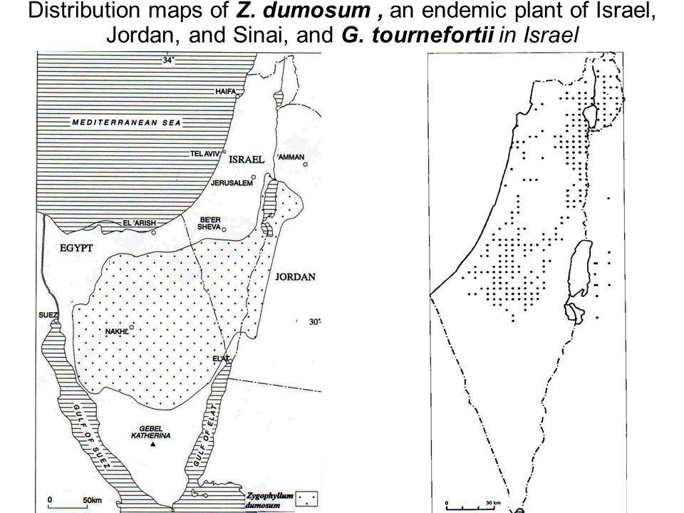 Avinoam Danin © Distribution maps of Z.