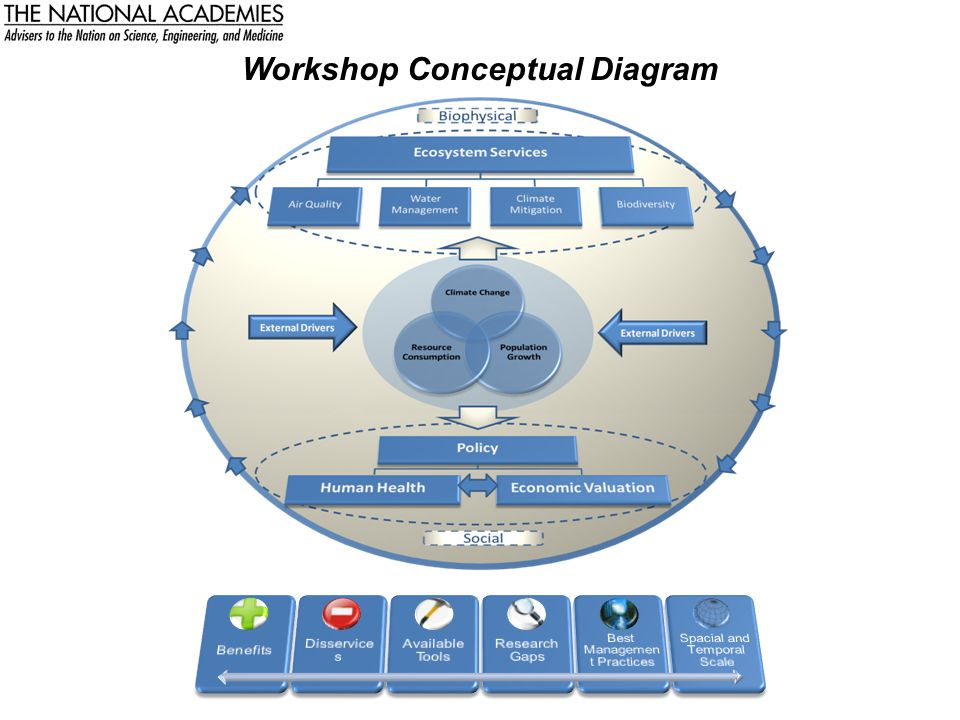 Workshop Conceptual Diagram