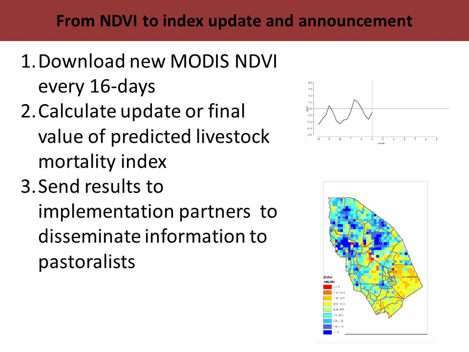 From NDVI to index update and announcement 1.Download new MODIS NDVI every 16-days 2.Calculate update or final value of predicted livestock mortality index 3.Send results to implementation partners to disseminate information to pastoralists