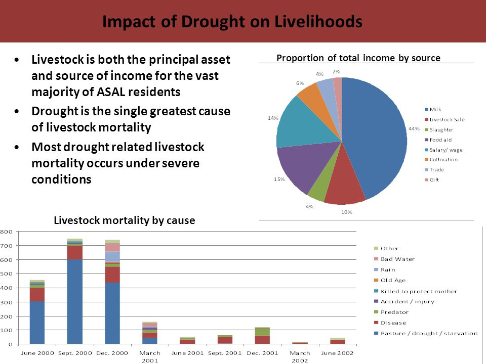 Impact of Drought on Livelihoods Livestock is both the principal asset and source of income for the vast majority of ASAL residents Drought is the single greatest cause of livestock mortality Most drought related livestock mortality occurs under severe conditions Proportion of total income by source Livestock mortality by cause