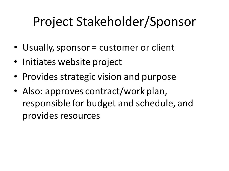 Project Stakeholder/Sponsor Usually, sponsor = customer or client Initiates website project Provides strategic vision and purpose Also: approves contract/work plan, responsible for budget and schedule, and provides resources