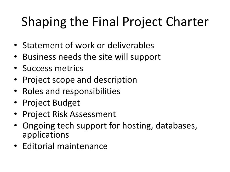 Shaping the Final Project Charter Statement of work or deliverables Business needs the site will support Success metrics Project scope and description Roles and responsibilities Project Budget Project Risk Assessment Ongoing tech support for hosting, databases, applications Editorial maintenance