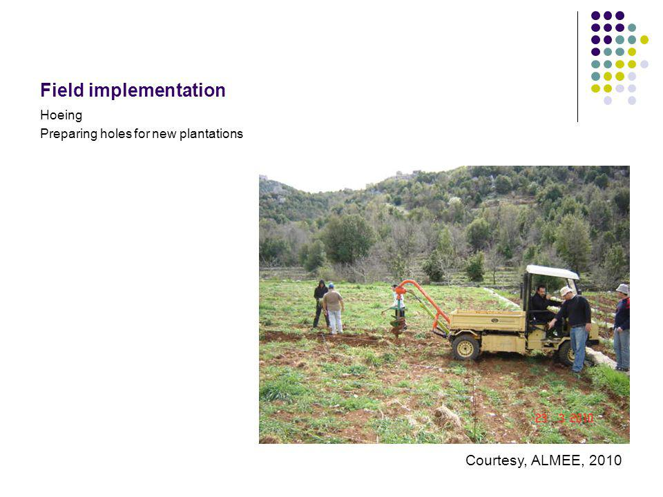 Field implementation Hoeing Preparing holes for new plantations Courtesy, ALMEE, 2010