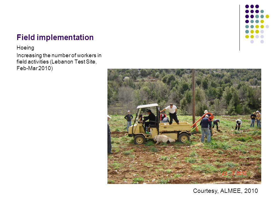 Field implementation Hoeing Increasing the number of workers in field activities (Lebanon Test Site, Feb-Mar 2010) Courtesy, ALMEE, 2010