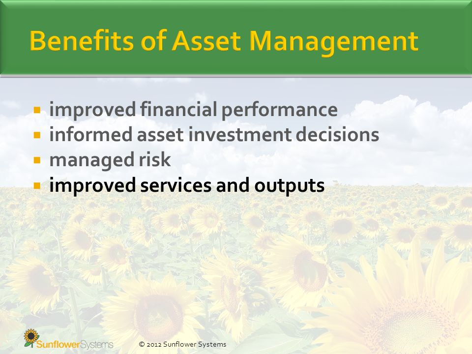  improved financial performance  informed asset investment decisions  managed risk  improved services and outputs © 2012 Sunflower Systems