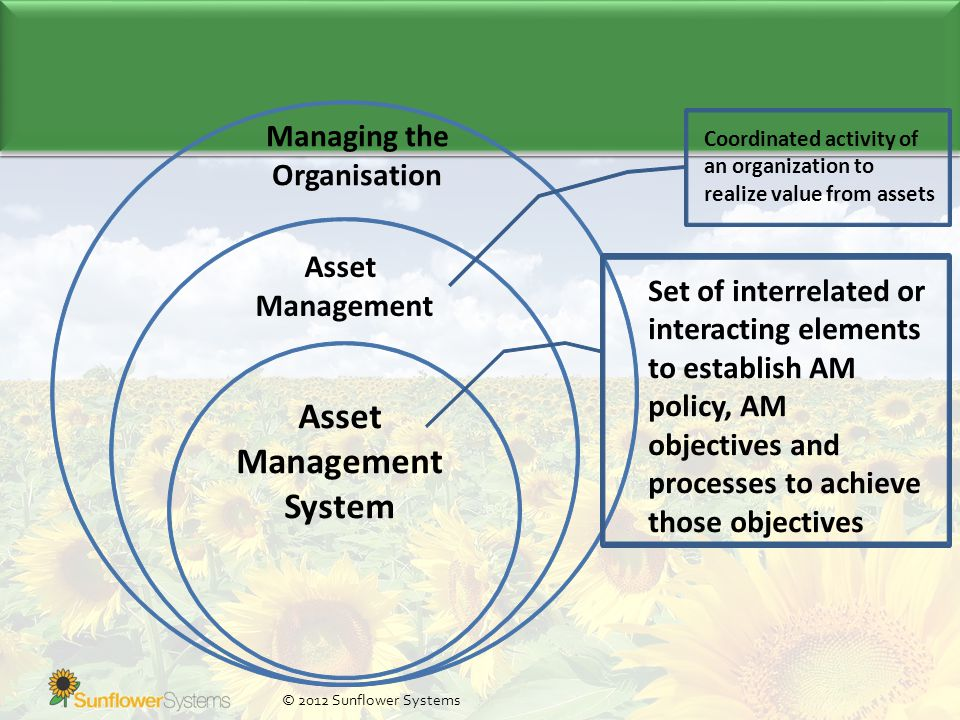 © 2012 Sunflower Systems Managing the Organisation Asset Management Coordinated activity of an organization to realize value from assets Asset Management System Set of interrelated or interacting elements to establish AM policy, AM objectives and processes to achieve those objectives
