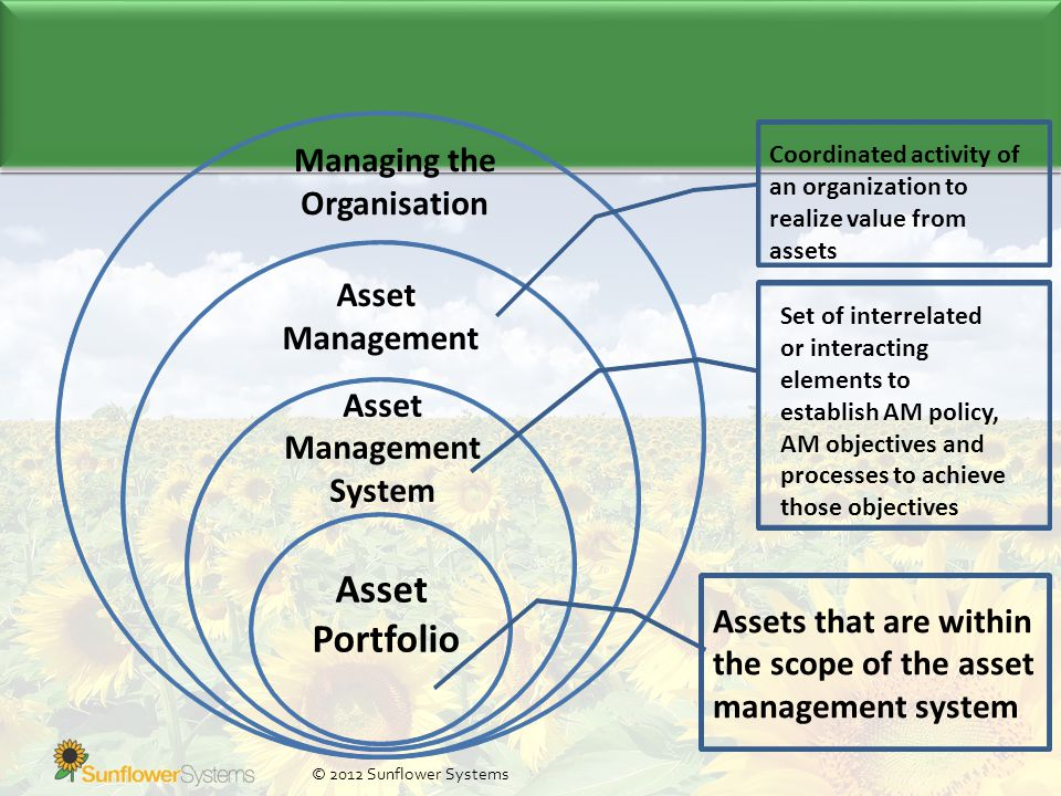 © 2012 Sunflower Systems Managing the Organisation Asset Management Coordinated activity of an organization to realize value from assets Asset Managem