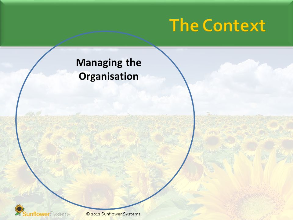 Managing the Organisation