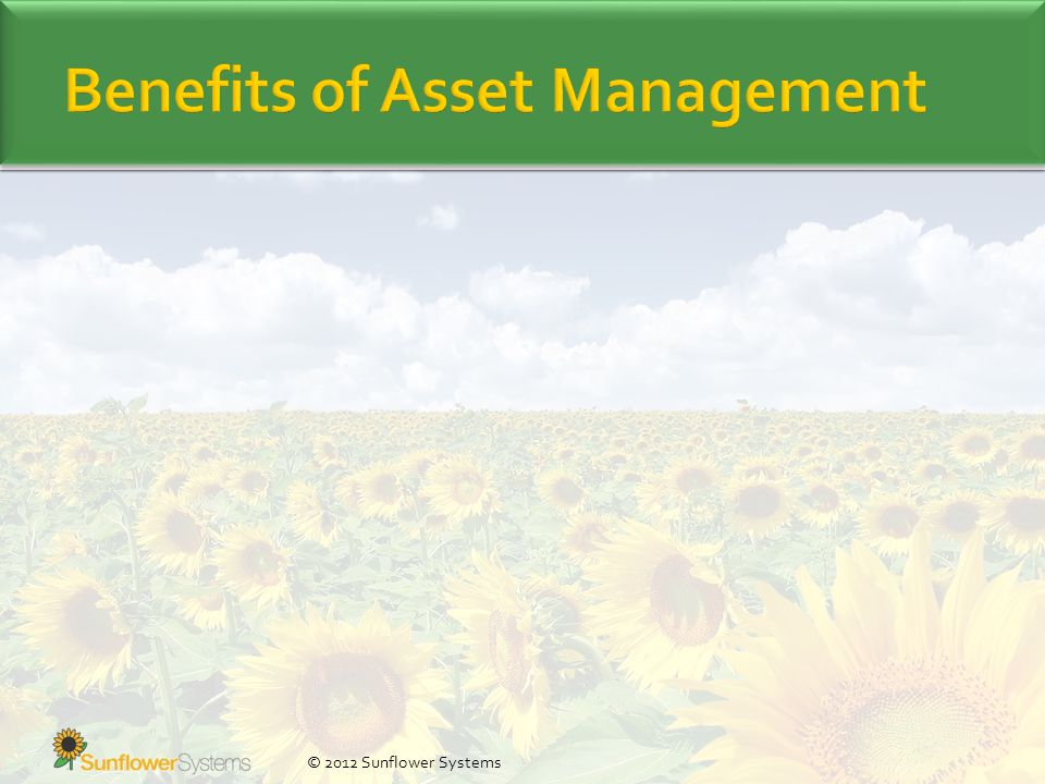 © 2012 Sunflower Systems Managing the Organisation Asset Management Coordinated activity of an organization to realize value from assets Asset Management System Set of interrelated or interacting elements to establish AM policy, AM objectives and processes to achieve those objectives Asset Portfolio Assets that are within the scope of the asset management system