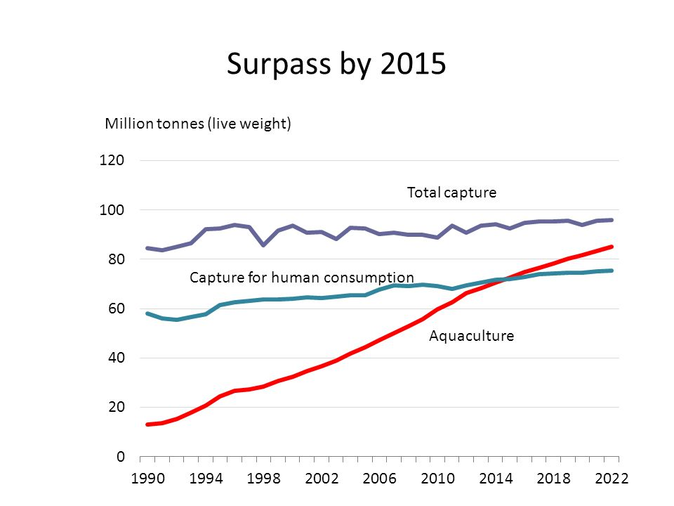 Surpass by 2015 Million tonnes (live weight) Total capture Capture for human consumption Aquaculture