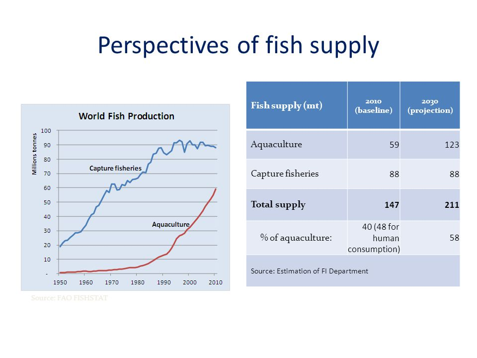 Perspectives of fish supply Fish supply (mt) 2010 (baseline) 2030 (projection) Aquaculture Capture fisheries 88 Total supply % of aquaculture: 40 (48 for human consumption) 58 Source: Estimation of FI Department Source: FAO FISHSTAT