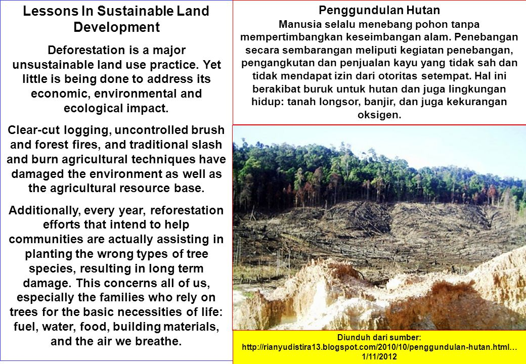 Lessons In Sustainable Land Development Deforestation is a major unsustainable land use practice.