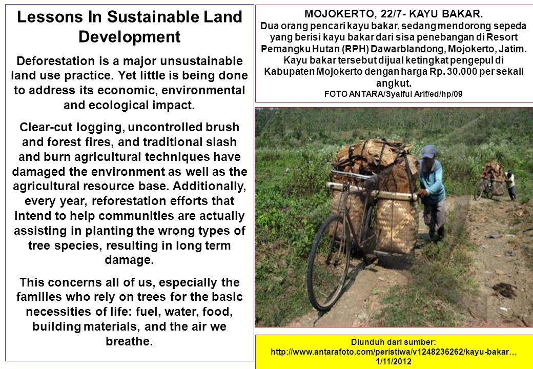 Lessons In Sustainable Land Development Deforestation is a major unsustainable land use practice. Yet little is being done to address its economic, en