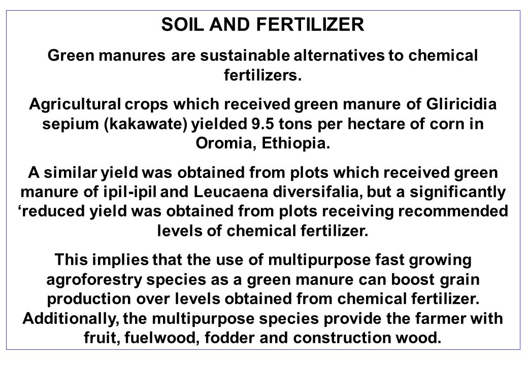 SOIL AND FERTILIZER Green manures are sustainable alternatives to chemical fertilizers.
