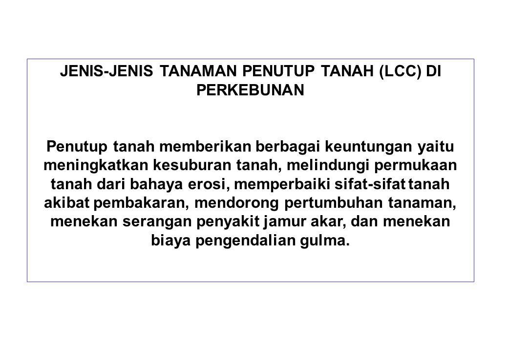 JENIS-JENIS TANAMAN PENUTUP TANAH (LCC) DI PERKEBUNAN Penutup tanah memberikan berbagai keuntungan yaitu meningkatkan kesuburan tanah, melindungi perm
