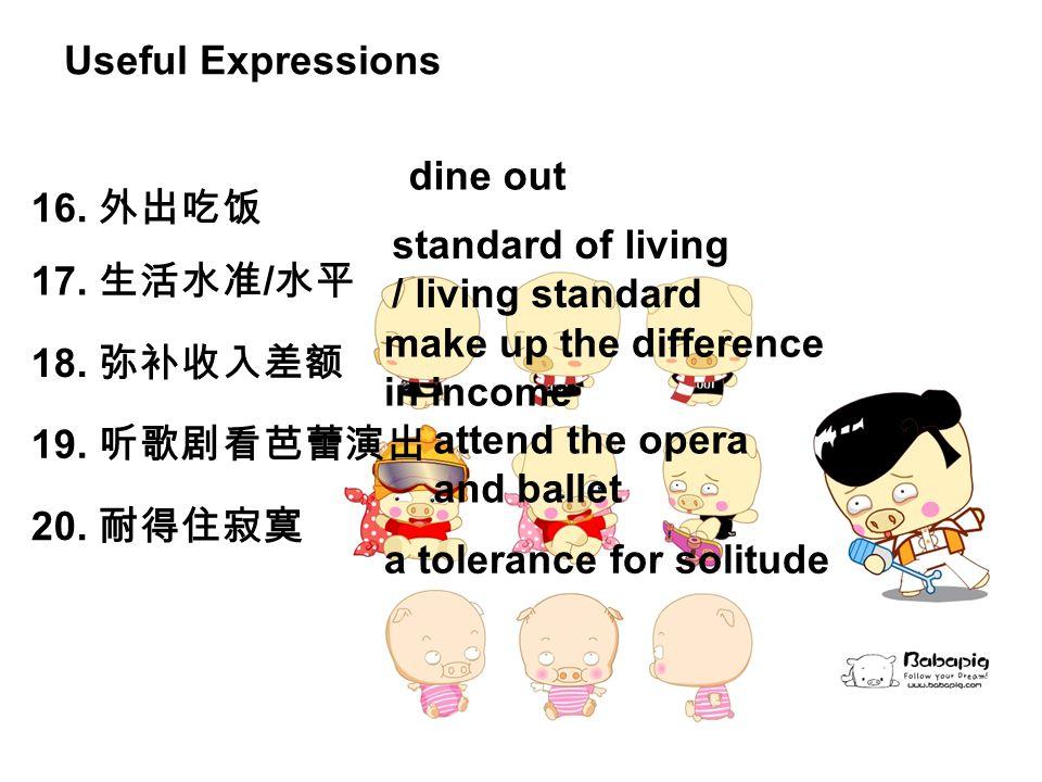 16. 外出吃饭 dine out 17. 生活水准 / 水平 standard of living / living standard 18.