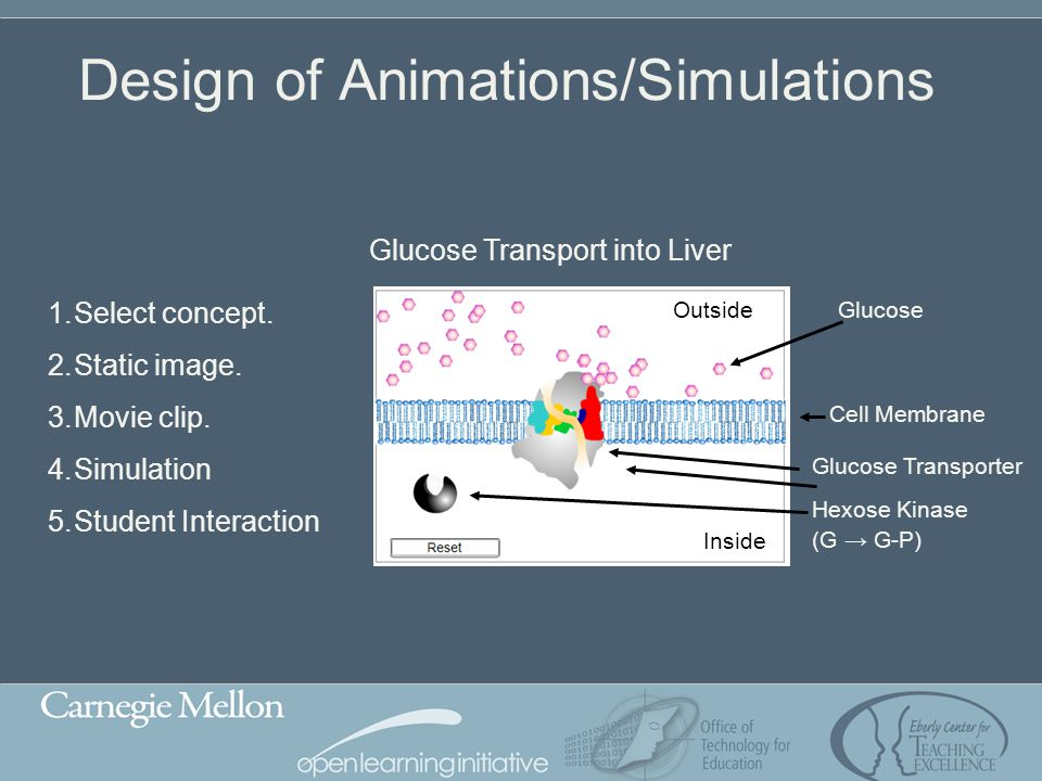 Design of Animations/Simulations 1.Select concept. 2.Static image. 3.Movie clip. 4.Simulation 5.Student Interaction Glucose Transport into Liver Gluco