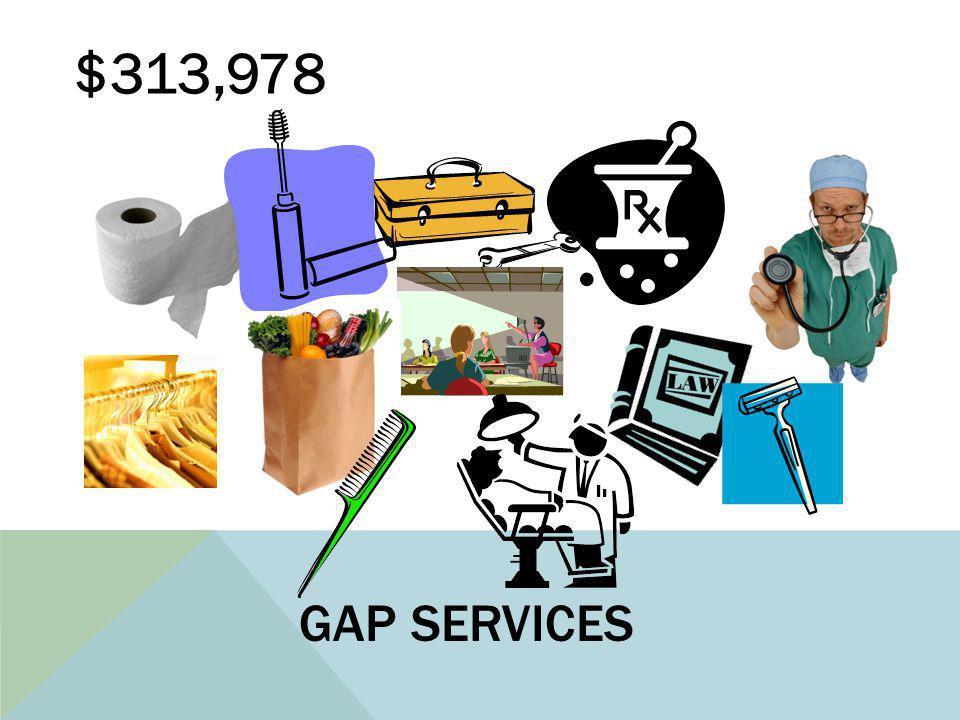 GAP SERVICES $313,978
