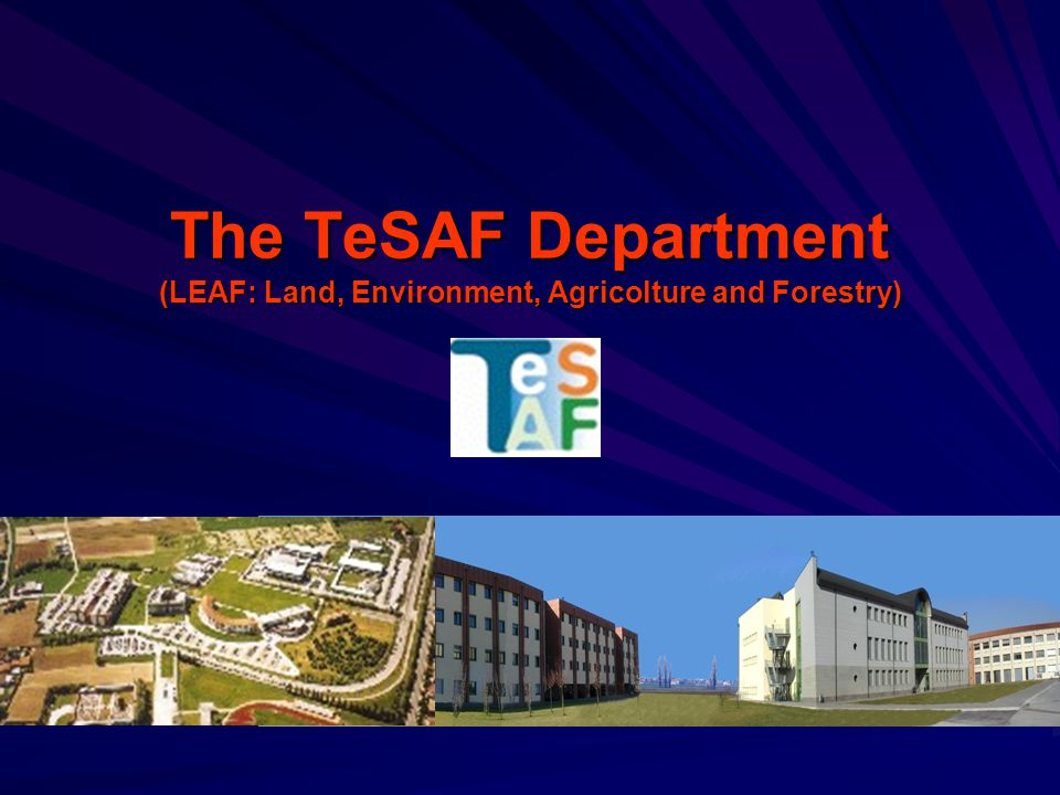 The TeSAF Department (LEAF: Land, Environment, Agricolture and Forestry)