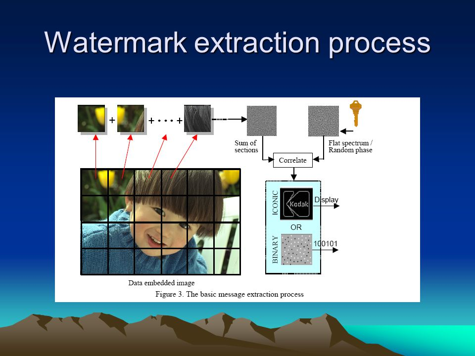 Watermark extraction process