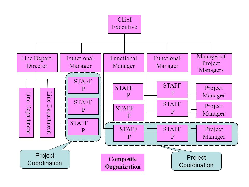 Chief Executive Line Department Line Depart. Director Line Department Functional Manager Functional Manager Functional Manager Project Manager STAFF P