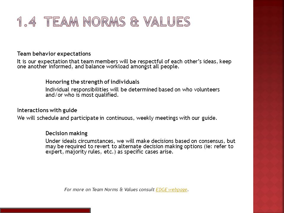 Team behavior expectations It is our expectation that team members will be respectful of each other's ideas, keep one another informed, and balance workload amongst all people.