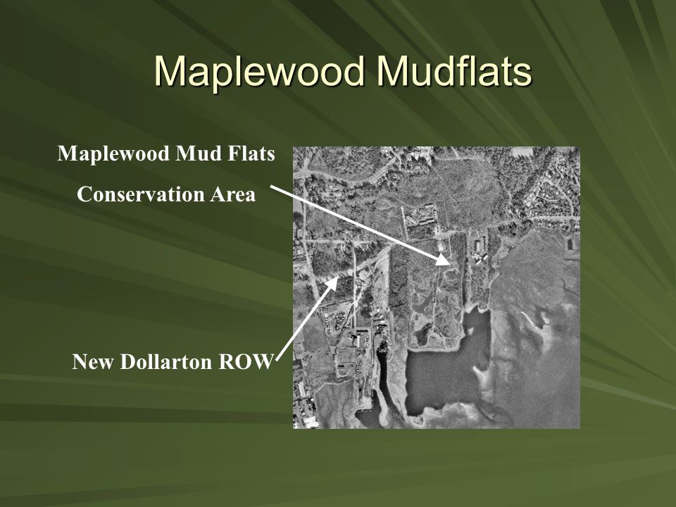 Maplewood Mudflats Maplewood Mud Flats Conservation Area New Dollarton ROW