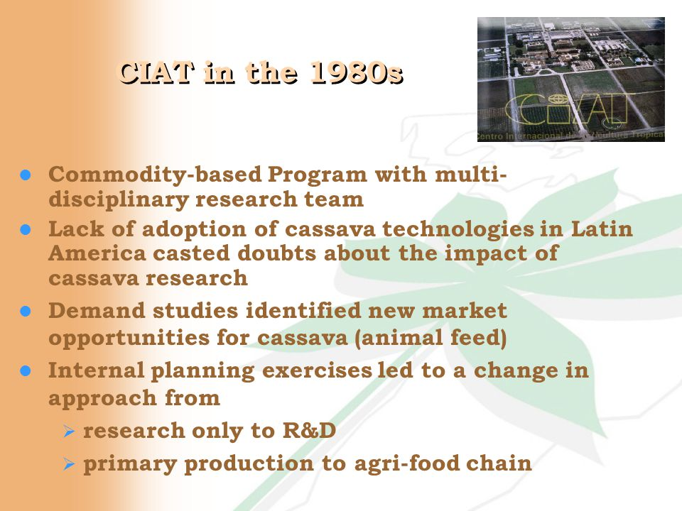 CIAT in the 1980s l Commodity-based Program with multi- disciplinary research team l Lack of adoption of cassava technologies in Latin America casted doubts about the impact of cassava research l Demand studies identified new market opportunities for cassava (animal feed) l Internal planning exercises led to a change in approach from  research only to R&D  primary production to agri-food chain