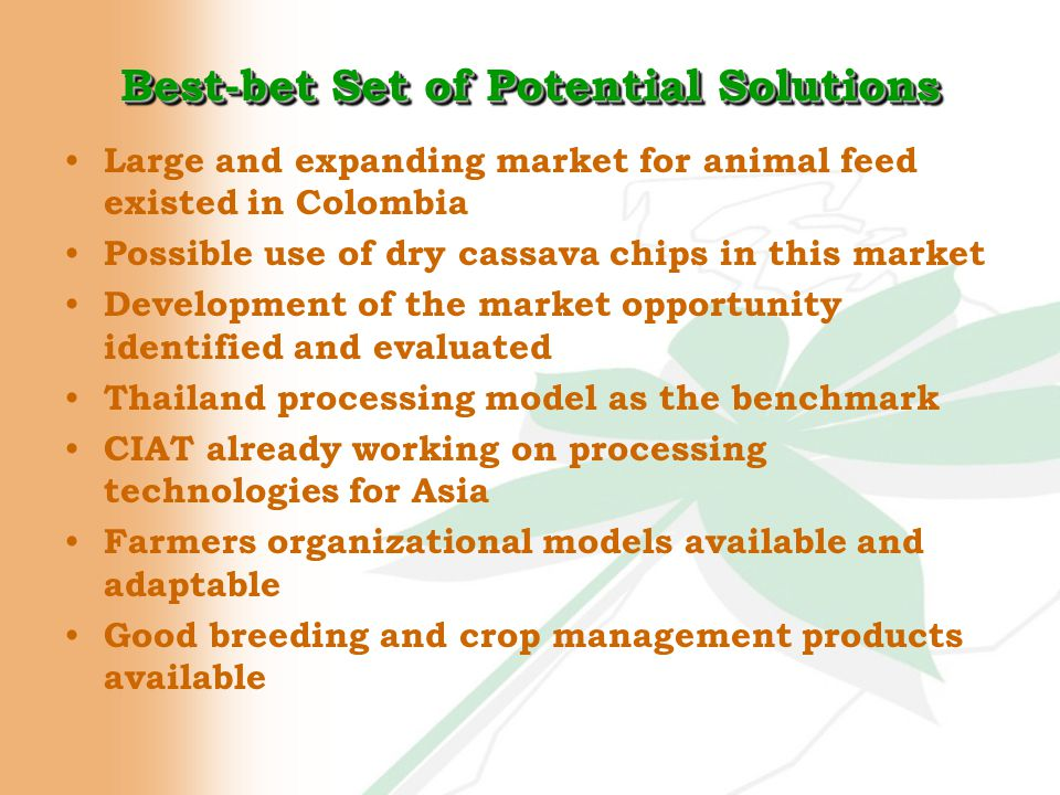 Best-bet Set of Potential Solutions Large and expanding market for animal feed existed in Colombia Possible use of dry cassava chips in this market Development of the market opportunity identified and evaluated Thailand processing model as the benchmark CIAT already working on processing technologies for Asia Farmers organizational models available and adaptable Good breeding and crop management products available