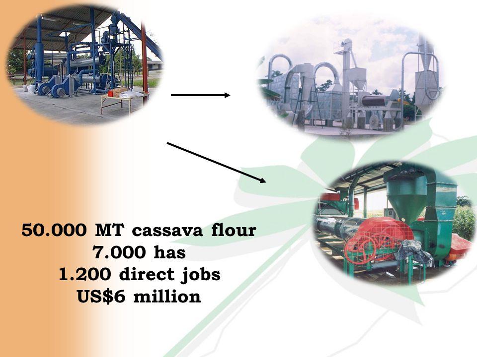 50.000 MT cassava flour 7.000 has 1.200 direct jobs US$6 million