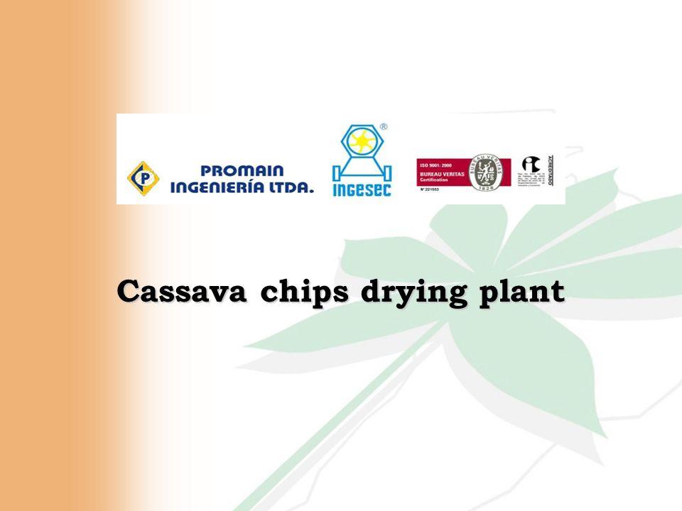 Cassava chips drying plant