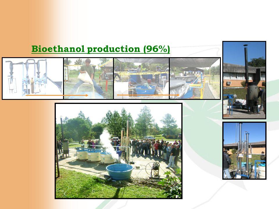 Bioethanol production (96%)