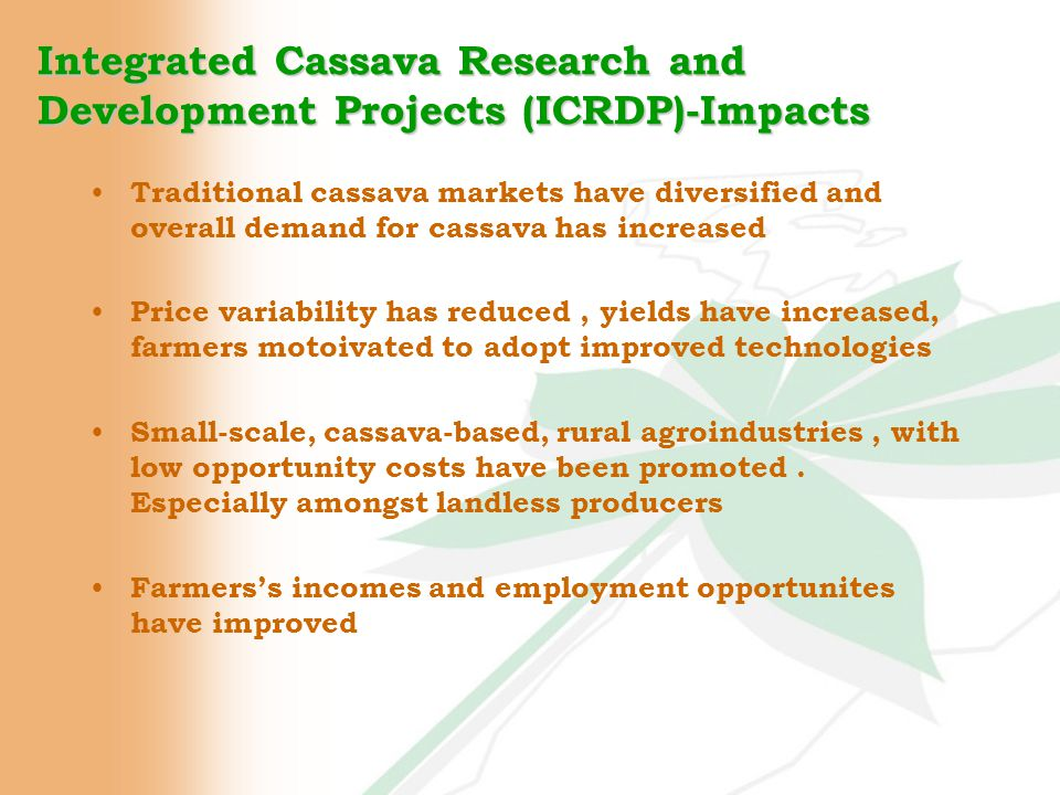 Traditional cassava markets have diversified and overall demand for cassava has increased Price variability has reduced, yields have increased, farmers motoivated to adopt improved technologies Small-scale, cassava-based, rural agroindustries, with low opportunity costs have been promoted.