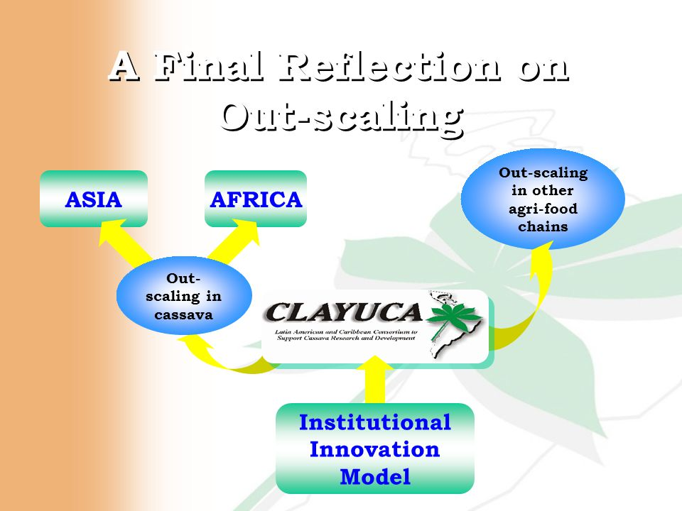 A Final Reflection on Out-scaling Out-scaling in other agri-food chains AFRICAASIA Out- scaling in cassava Institutional Innovation Model